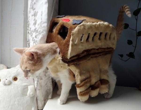 21コスチュームをした猫