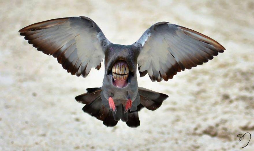 体の半分が口の鳥2