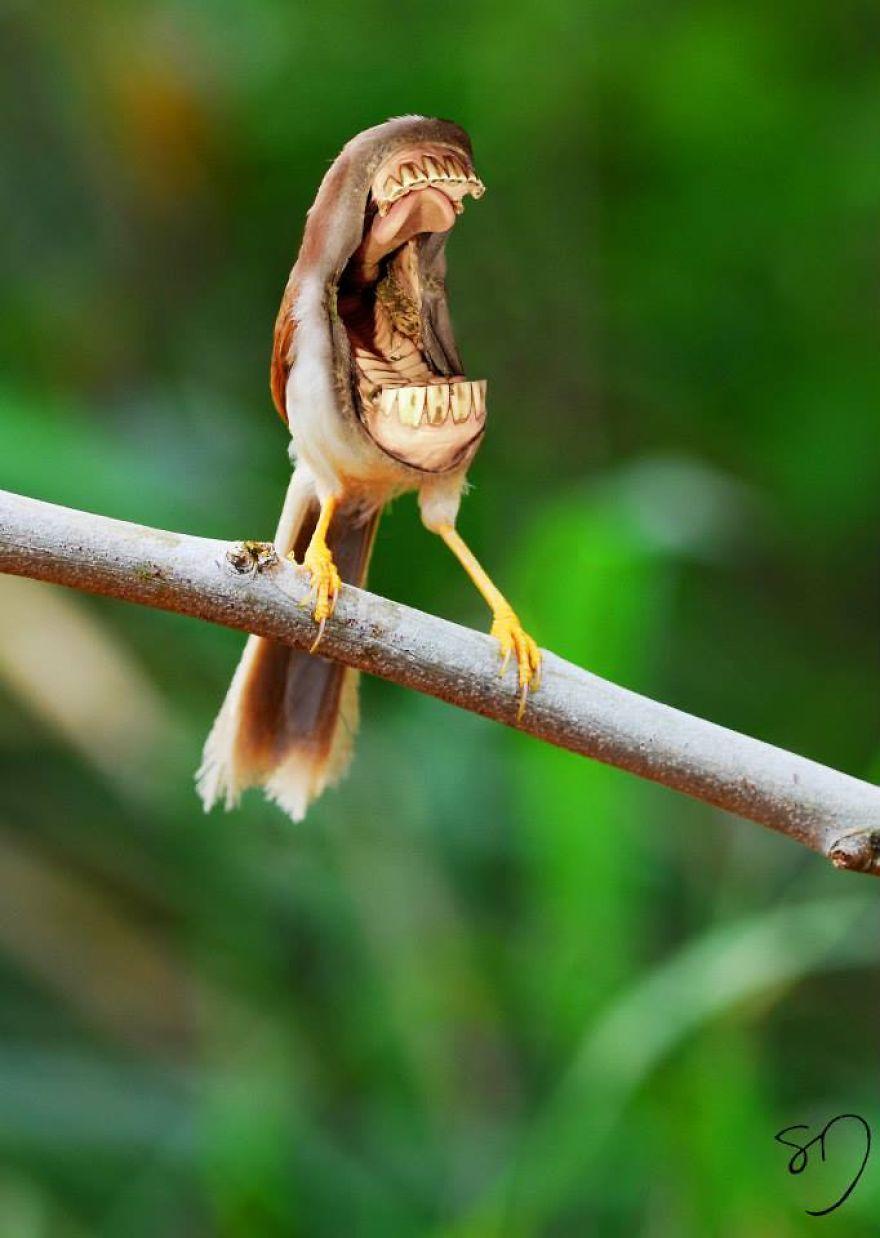 体の半分が口の鳥8