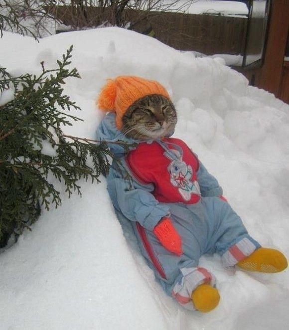 冬を満喫する人22