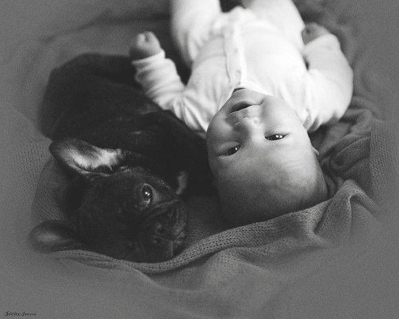 同じ日に生まれた犬と赤ちゃん8