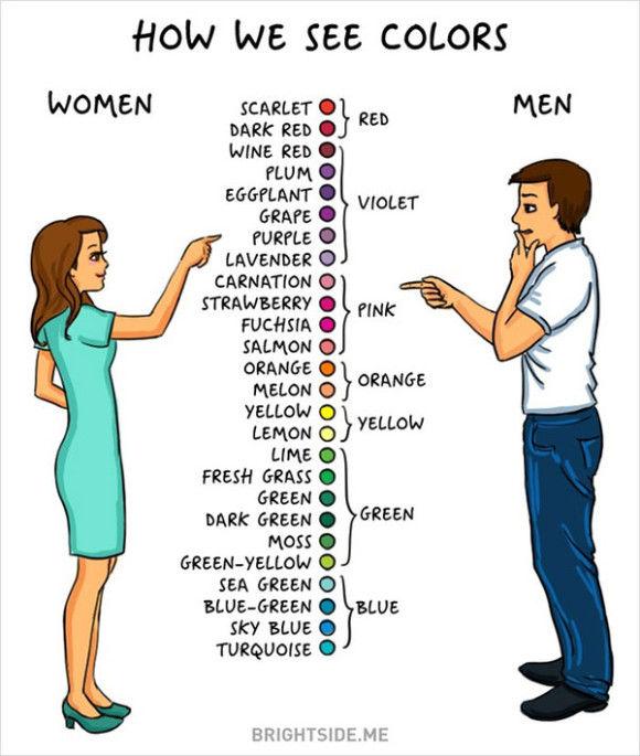 男と女の違い1