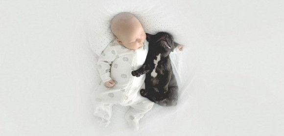 同じ日に生まれた犬と赤ちゃん2