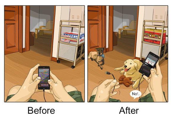 愛犬を飼い始めた後と前8