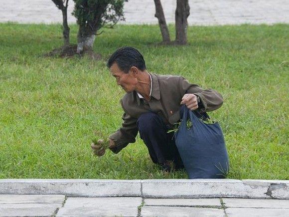 北朝鮮の日常22