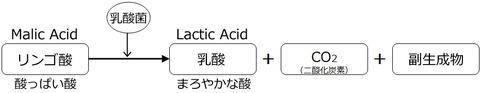 mlf_formula