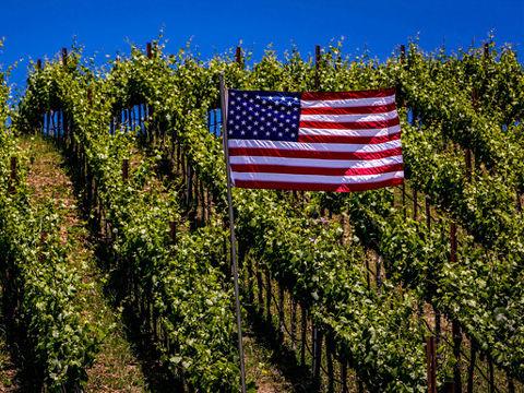 american_flag_on_vineyard