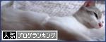 banner(2)