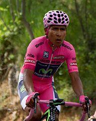 2014_Giro_d'Italia,_quintana_(17600678479)