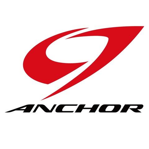 Bridgestone_Anchor_Logo
