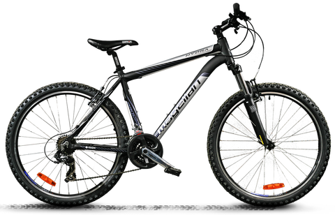 bicycle_PNG5388