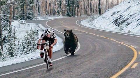 【笑報】自転車乗り、大いに逃げる