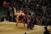 日馬富士×琴欧洲-1