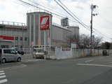 20060205藤井寺3
