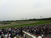 京都競馬場(右)