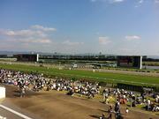京都競馬場(左)