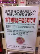 造幣局桜の通り抜けは午後5時まで
