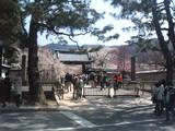 200604醍醐寺1