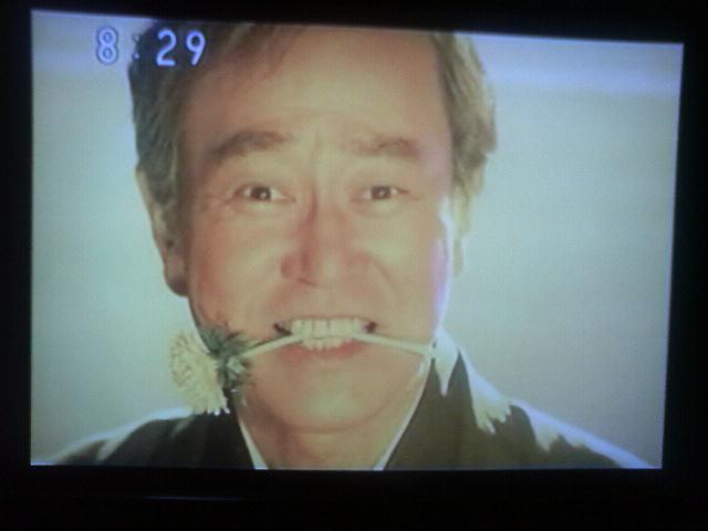 ちりとてちん (テレビドラマ)の画像 p1_20