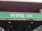 wins石和-2