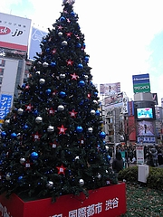 B'z クリスマスツリー2008 (渋谷駅前ハチ公広場) 昼間編  11