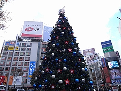 B'z クリスマスツリー2008 (渋谷駅前ハチ公広場) 昼間編  9