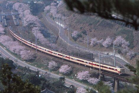 KT381375      山中渓