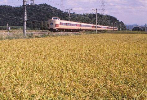 KT381029 891000 紀三井寺~黒江