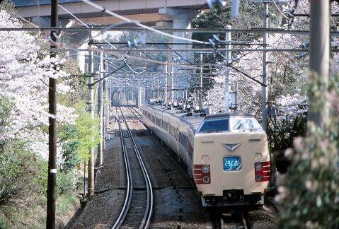 KT381361   山中渓