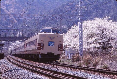 KT381364   山中渓