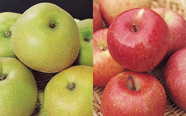 梨とリンゴってよく比べられるけどさ