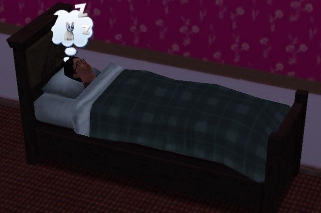 【sims3】中山司は救われたい【part3】2