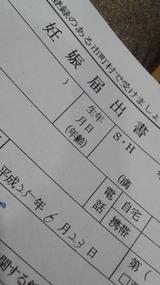 b2f7f7f3.jpg
