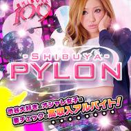 渋谷ガールズバー『PYLONパイロン』高収入アルバイト求人サイト