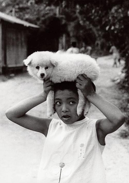 父写真犬と少女