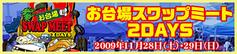 banner_swap2009