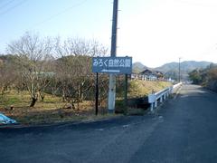 IMGP1176