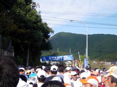 IMGP0988
