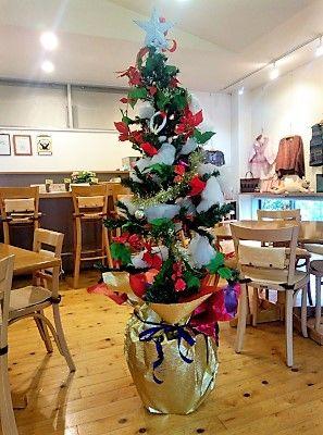 クリスマスツリーがお目見え
