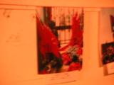 写真展_青赤フラッグ