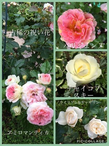 古稀の祝い花