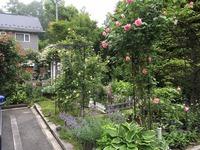 28年の庭
