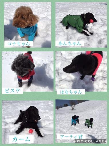 雪遊びメンバー