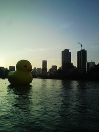 floating_rubber_duck