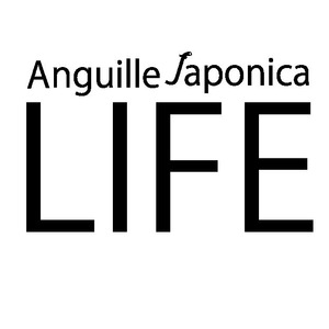 anguillelife