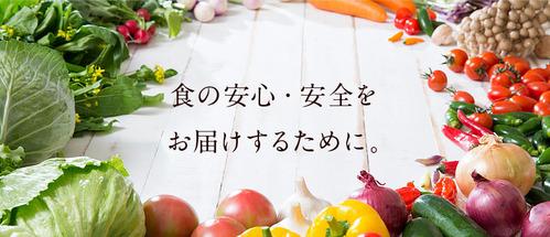 top_main_img001