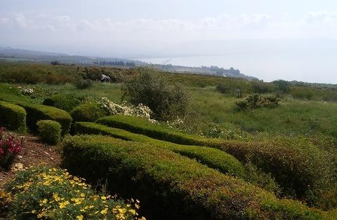 イスラエル-自然豊か
