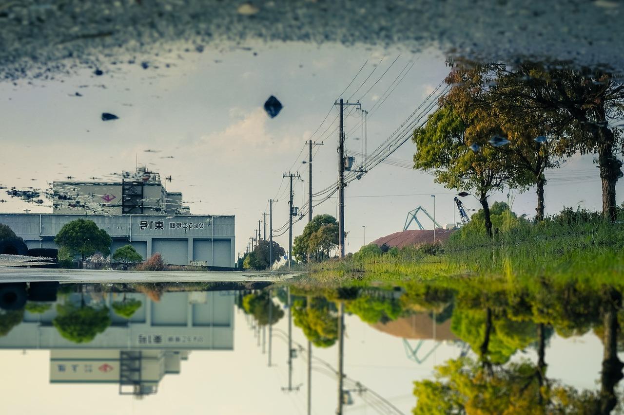 水鏡 水鏡の世界 水鏡写真 水たまり 写真家 神楽