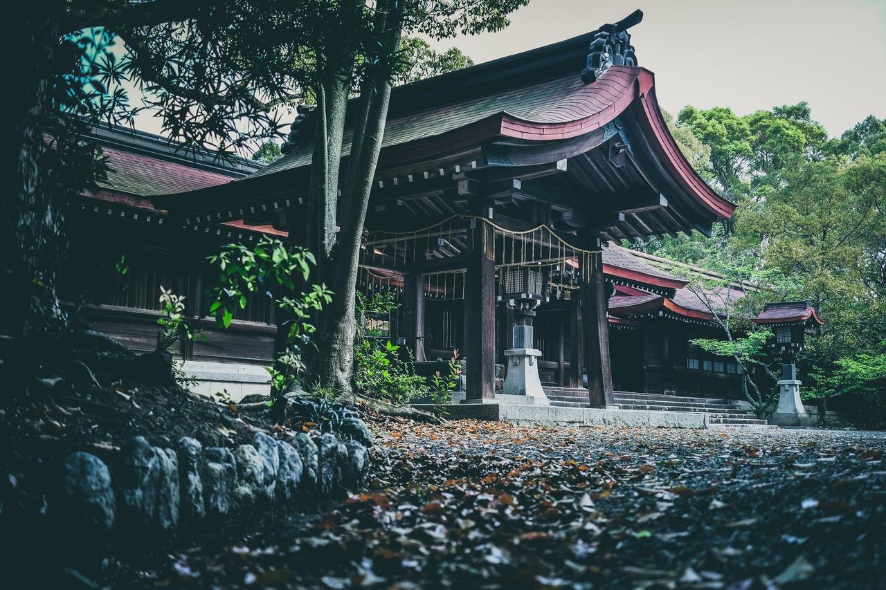 阿波神社 徳島 神社 写真家 神楽
