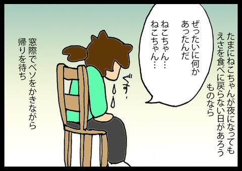 nekochanhimitsu6-3